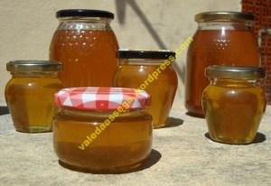 O mel produzido este ano é puro, doce, e vale cada gota de suor por ele vertido.